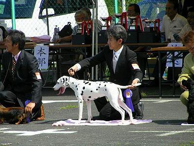 ショー②2006.09.10_exikf
