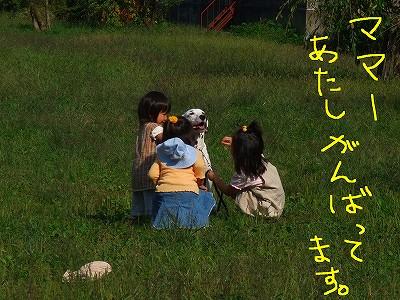 DSCF0339-2.jpg
