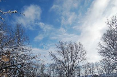 大雪の後2010262