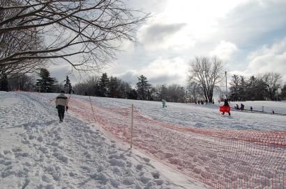 大雪の後2010263