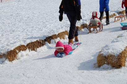 大雪の後2010266