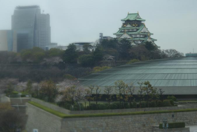 朝の大阪城