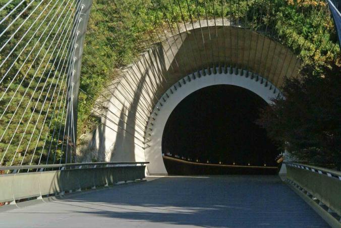 ミホトンネル