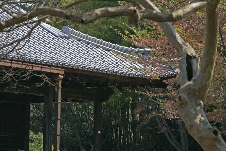 総持寺本堂2