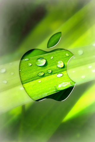 apple緑