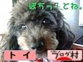 2009a-toy.jpg