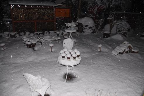 1月21日雪 004