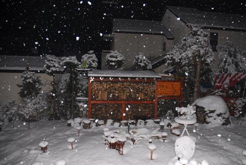 1月21日雪 008