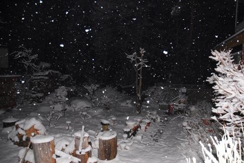 1月21日雪 011