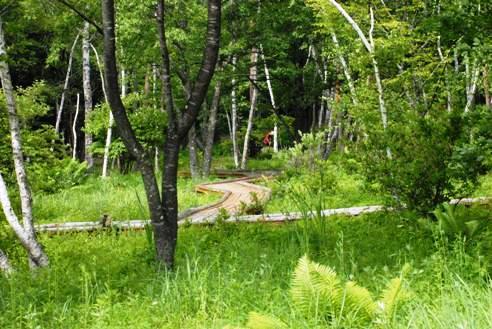 自然文化園 056