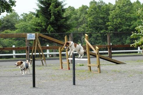 自然文化園 087