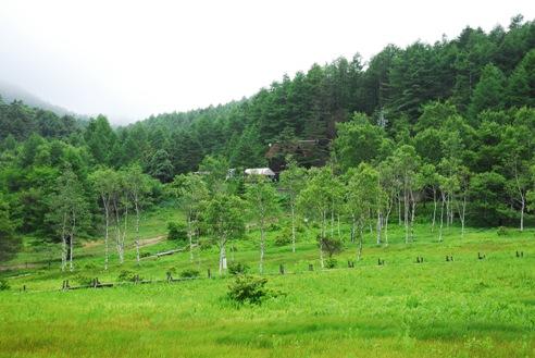 入笠山湿原 032