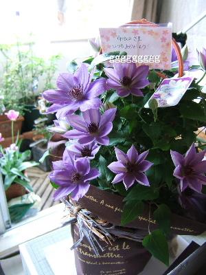 2011_0508(010).jpg