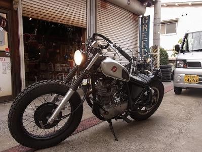 RIMG0010ss (3)
