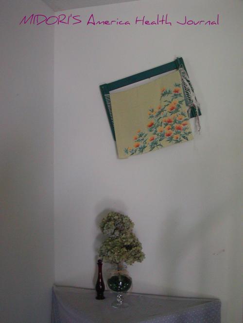 アジサイと紅花のギャラリー
