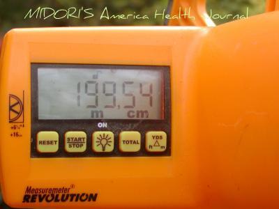 oct+14+021_convert_20101021224348.jpg