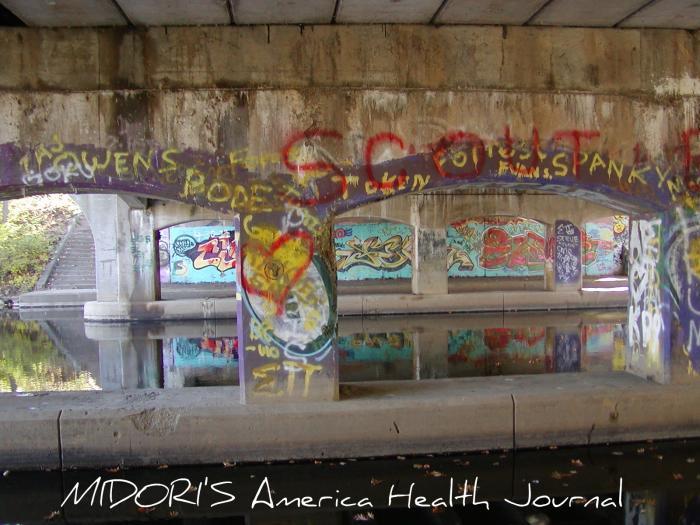 ミシガン州立大学キャンパス 橋 アート