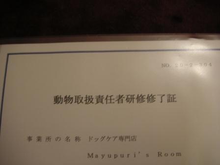 kenshuu2.jpg