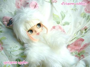 うさぎ姫2