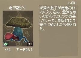 亀甲羅ダケカード