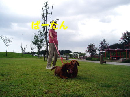 2008年8月14日-4