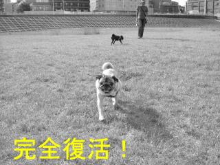 2005_0708s0009b.jpg