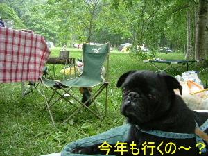 2005_0718camp0018b.jpg