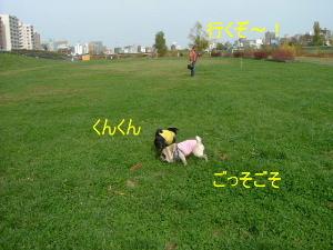 2005_1109aki0011b.jpg