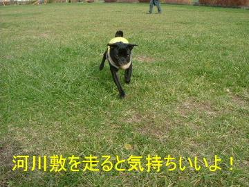 2005_1109aki0014b.jpg