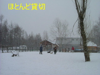 2005_1211wel0008b.jpg
