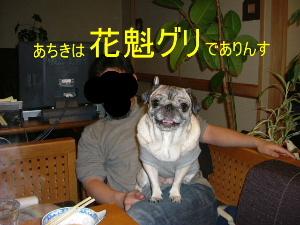 2005_1211wel0012b.jpg
