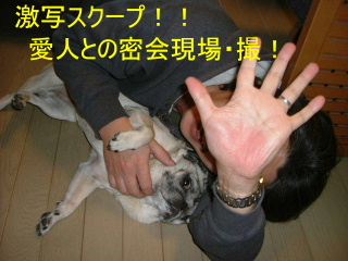 2005_1219fuku0009b.jpg