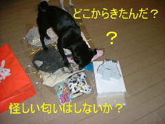 2005_1219fuku0013b.jpg