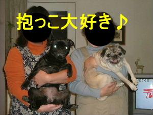 2005_1224hb0003bc.jpg
