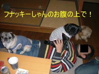 2006_0116kusi0019b.jpg