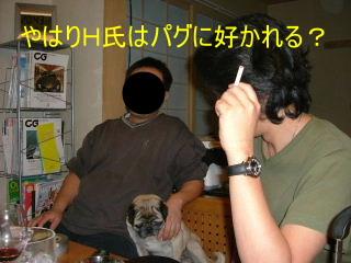 2006_0309piyohiko0010b.jpg