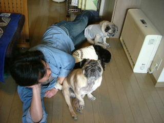 2006_0313hiyohiro0011b.jpg