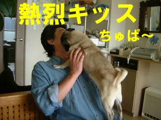 2006_0412motoni0002.jpg