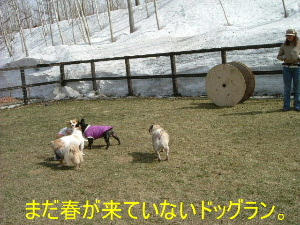2006_0416temaki0015b.jpg