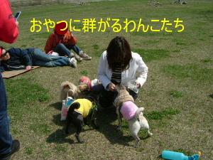 2006_0430monakawa0015.jpg