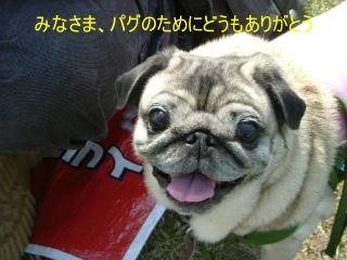2006_0430monakawa0019b.jpg