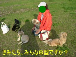 2006_0514ume0020.jpg