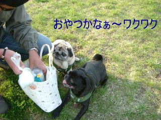 2006_0515deto0014.jpg