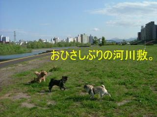 2006_0525sui0010b.jpg