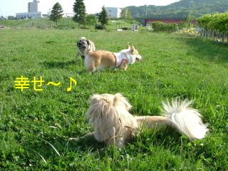 2006_0604kinndo0019b.jpg