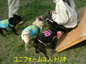2006_0605sun0013b.jpg