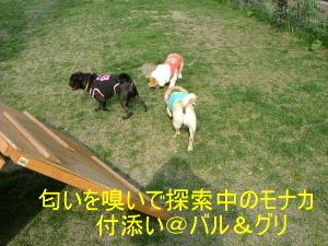 2006_0605sun0014b.jpg