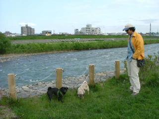 2006_0608fure0012.jpg