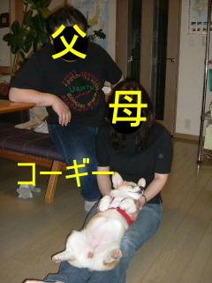 2006_0610ame0002b.jpg