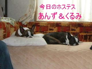 2006_0612jinbe0025.jpg